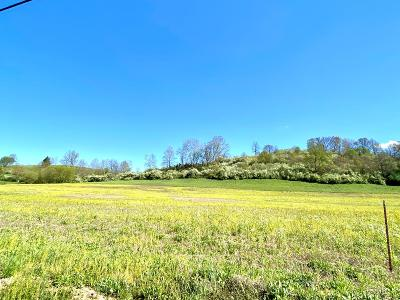 Wheelersburg Residential Lots & Land For Sale: Goose Creek - Parcel Q