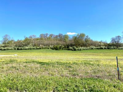 Wheelersburg Residential Lots & Land For Sale: Goose Creek Parcel S