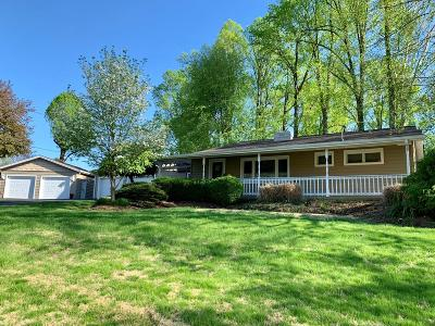 Wheelersburg Single Family Home For Sale: 660 Filmore Lane
