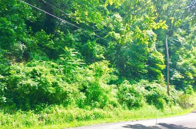Portsmouth Residential Lots & Land For Sale: 1242 Lowery