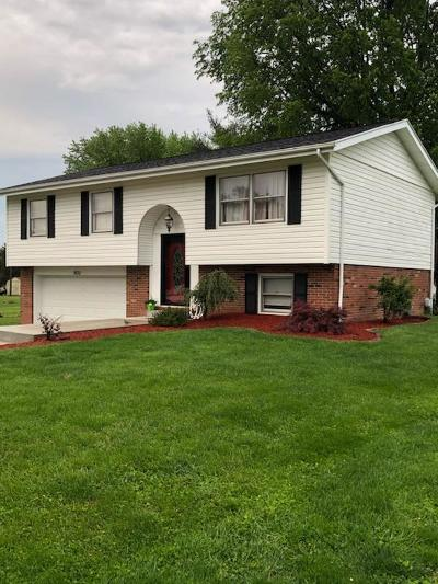 Wheelersburg Single Family Home For Sale: 2630 Brookhaven Drive