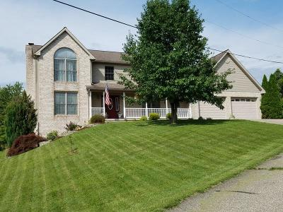 Wheelersburg Single Family Home For Sale: 45 Ricklan Dr.