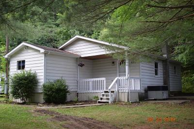 Single Family Home For Sale: 672 Worleys Run Rd