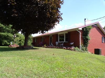 Lucasville Single Family Home For Sale: 967 Duck Run Road