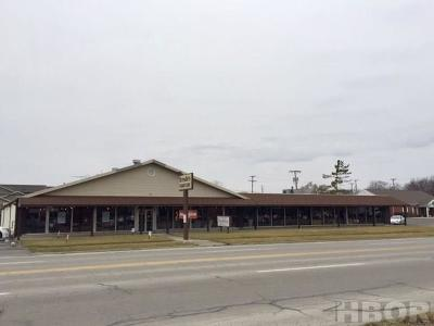 Findlay OH Commercial For Sale: $649,900