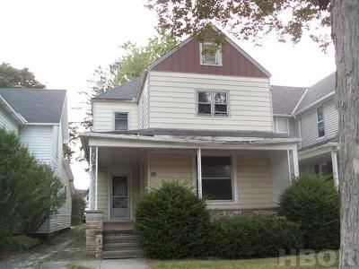 Single Family Home For Sale: 397 S Monroe St