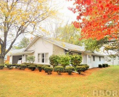 Bluffton Single Family Home For Sale: 164 Albert St