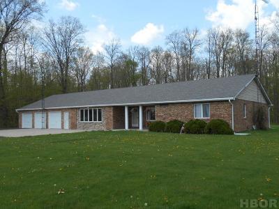 Van Buren OH Single Family Home For Sale: $295,000