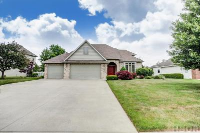 Single Family Home For Sale: 8449 Indian Lake Dr