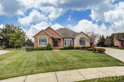 Findlay Single Family Home For Sale: 2112 Golden Eagle Dr