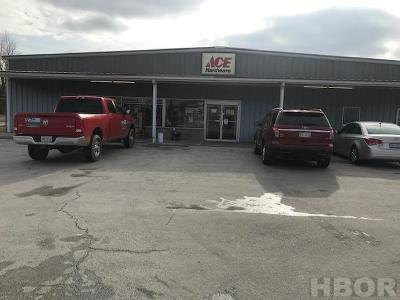 Commercial For Sale: 10205 Us Rt 224
