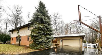 Findlay Single Family Home For Sale: 10910 Township Rd 80
