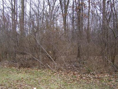 Lorain County Residential Lots & Land For Sale: Parkview Dr