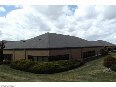 Commercial For Lease: 885 South Sawburg Rd #110
