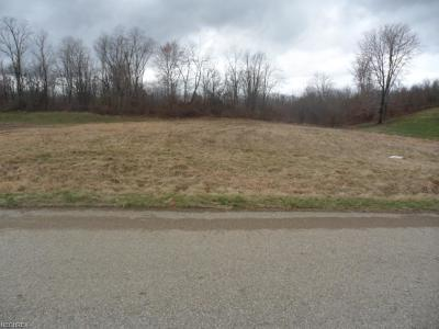 Residential Lots & Land Sold: 1259 Hickory Creek Dr