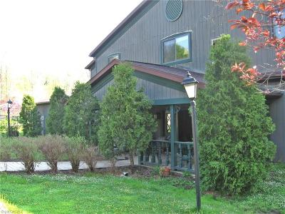 Geauga County Single Family Home For Sale: 16883 Valley Rd
