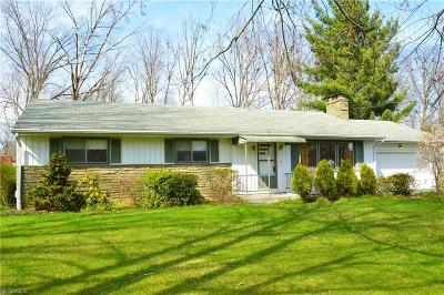 Canfield Single Family Home For Sale: 266 Moreland Dr