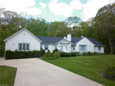 Chagrin Falls Single Family Home For Sale: 4820 West Fairview Rd