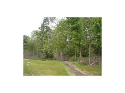 Strongsville Residential Lots & Land For Sale: 13525 Royalton Rd
