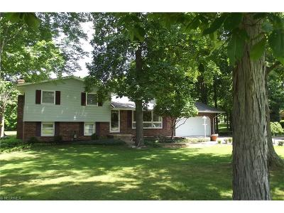 Alliance OH Single Family Home Sold: $155,000