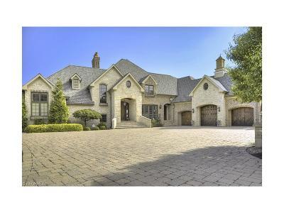 Avon Lake Single Family Home For Sale: 32196 Lake Rd