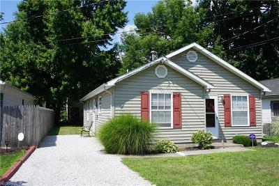 Painesville Township Single Family Home For Sale: 927 Pontiac Ave