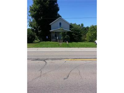 Vienna Single Family Home For Sale: 883 Youngstown Kingsville Rd Northeast