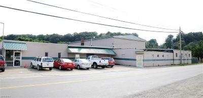 Guernsey County Commercial For Sale: 128 Steubenville Avenue