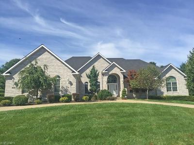 Broadview Heights Single Family Home For Sale: 7404 Cherry Hill Ln