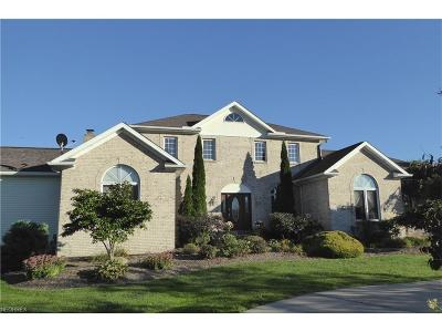 Chesterland Single Family Home For Sale: 12695 Barfield Dr