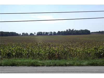 Homeworth OH Residential Lots & Land Sold: $227,500