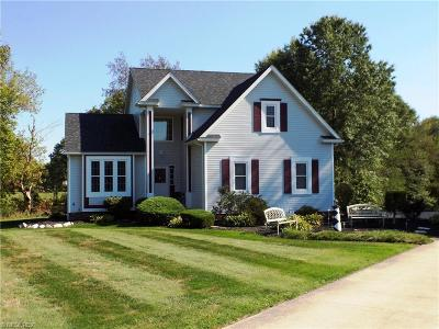 Brimfield Single Family Home For Sale: 2490 Duck Pond Dr