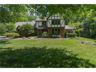 Poland Single Family Home For Sale: 3535 Candy Woods Dr