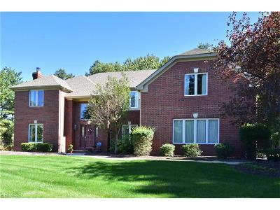 Avon, Avon Lake Single Family Home For Sale: 319 Cheyenne Falls