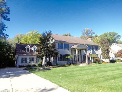 Boardman Single Family Home For Sale: 668 Saddlebrook Dr