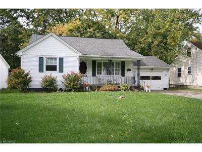 Boardman Single Family Home For Sale: 4010 Hopkins Rd