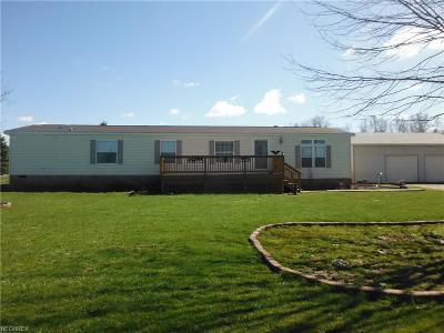 Garrettsville Single Family Home For Sale: 12902 McCall Rd
