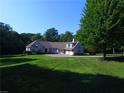 Mentor Single Family Home For Sale: 9671 Little Mountain Rd