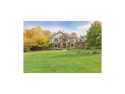 Solon Single Family Home For Sale: 7549 Worlington Dr