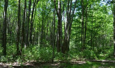 Geauga County Residential Lots & Land For Sale: County Line Rd