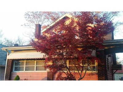 Youngstown Single Family Home For Sale: 528 West Princeton