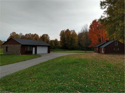 Poland Single Family Home For Sale: 1411 West Western Reserve Rd