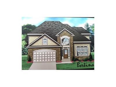 Lyndhurst Single Family Home For Sale: S/L 7 Eagle Point Dr