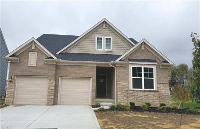North Ridgeville Single Family Home For Sale: 36074 Navona Ln