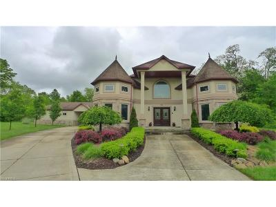 Aurora Single Family Home For Sale: 315 South Chillicothe Rd