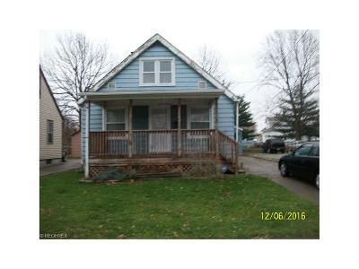 Lorain Single Family Home For Sale: 2619 Caroline Ave
