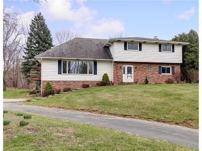 Willoughby Hills Single Family Home For Sale: 37050 Eagle Rd