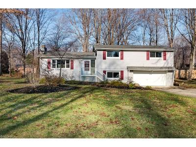 Mentor Single Family Home For Sale: 9213 Luoem Trl