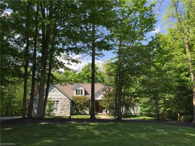 Chagrin Falls Single Family Home For Sale: 104 Champion Ln