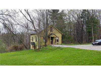 Chardon Multi Family Home For Sale: 11074 Mayfield Rd